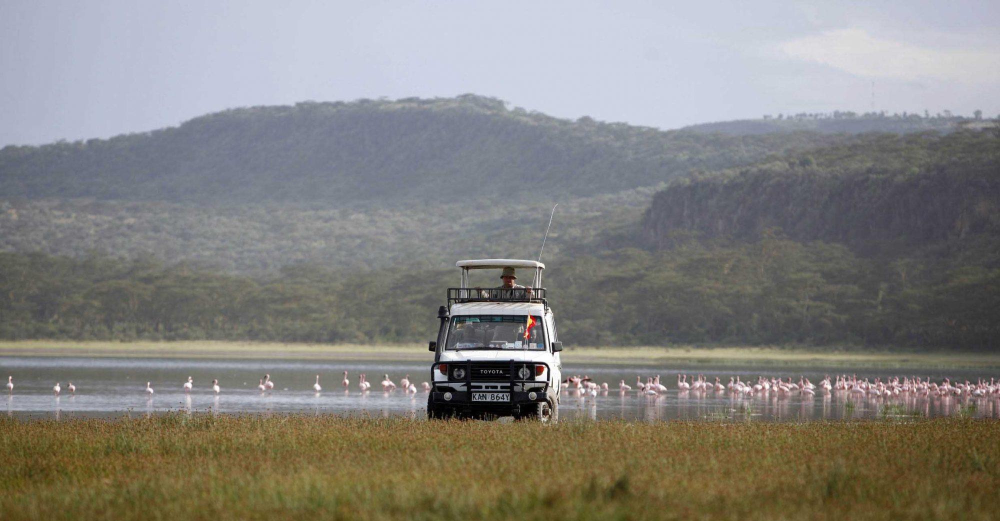 Lago Nakuru, paraíso de ornitólogos y mucho más